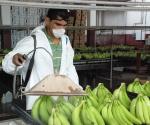 SEDRU Busca Impulsar la Organización Rural de los Sistemas Producto