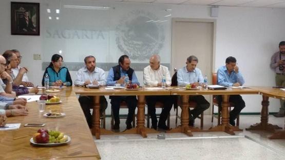 Asegura Michoacán Exportación de Aguacate de Calidad