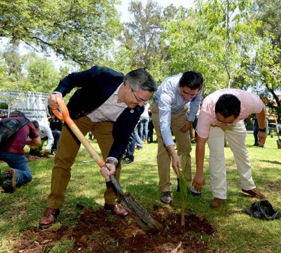 Restaurar Areas Naturales, Reto del Gobierno y Sociedad: Salvador Abud