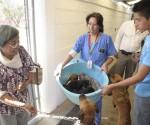 El Centro de Atención Canina Fomenta Adopción de Mascotas