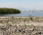 Asigna Conagua Volúmenes de Agua a Usuarios de la Cuenca Lerma-chapala