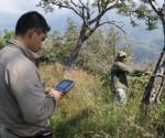 Lista la Actualización del Inventario Forestal y de Suelos del Estado de Michoacán