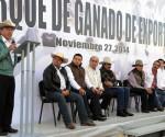 Michoacán Produce Ganado de Calidad de Exportación; Logran Enviar Primer Embarque de Bovinos a los EU