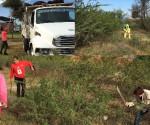 Ayuntamiento Realiza Jornada de Limpieza en la Colonia Vicente Lombardo