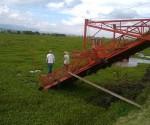 En Marcha, Labores de Extracción y Limpieza de la Vegetación Acuática de la Presa de Malpaís