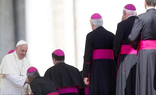 Cardenales Papa
