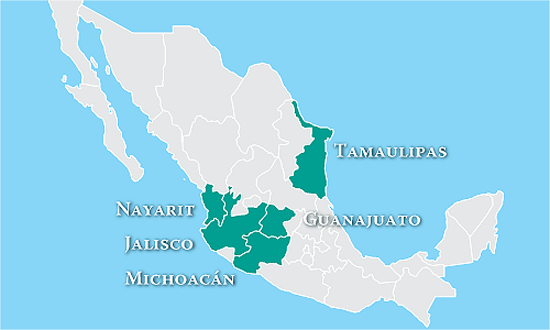 Michoacan Guanaguato