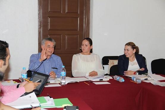 Presentarán al Pleno Nueva Ley de Participación Ciudadana