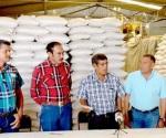 SEDRU Apoya con 800 mp a Productores de Arroz de Lombardía
