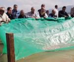 Libera Gobernador 400 mil Crías de pez Blanco en Lago de Pátzcuaro