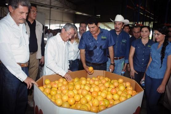 Inversiones Productivas, Fundamentales Para que Michoacán Supere sus Problemas Económicos y de Seguridad: Jara Guerrero