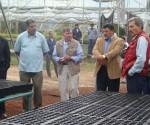 Aplican 15 Millones de Pesos Para el Fortalecimiento de los Programas de Restauración y Protección Forestal