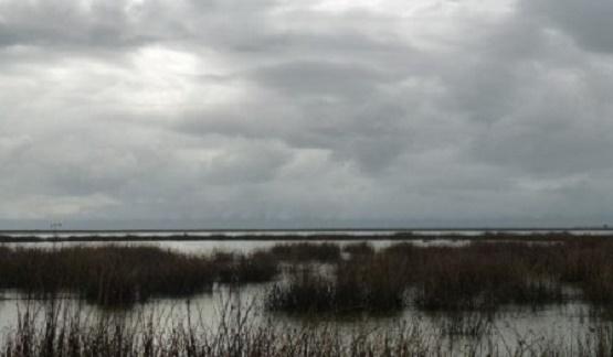 Peligro en el Lago de Cuitzeo