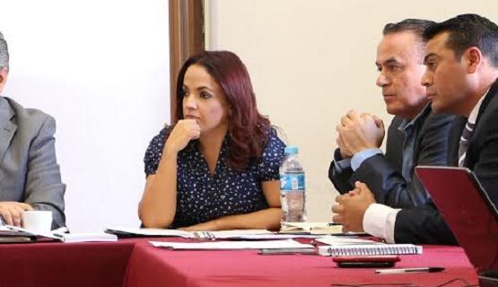 Andrea Villanueva Participa en la Comisión de Gobernación