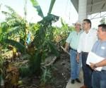 Se Potencializará el Desarrollo de la Región Sierra-Costa: Silvano Aureoles