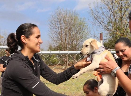 Esterilización y Adopción, Objetivos del Centro de Atención Animal en 2016
