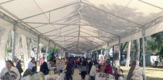 Bazar de Artesanías