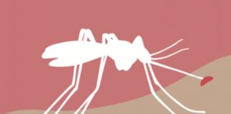 Zika, Chikungunya, Dengue