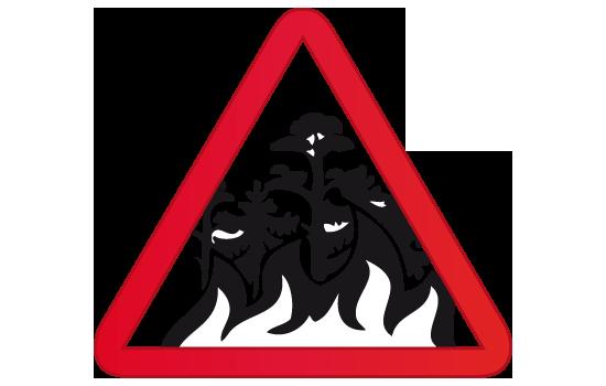 incendio forestal arbol fuego