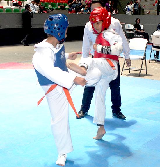 Copa-Taekwondo