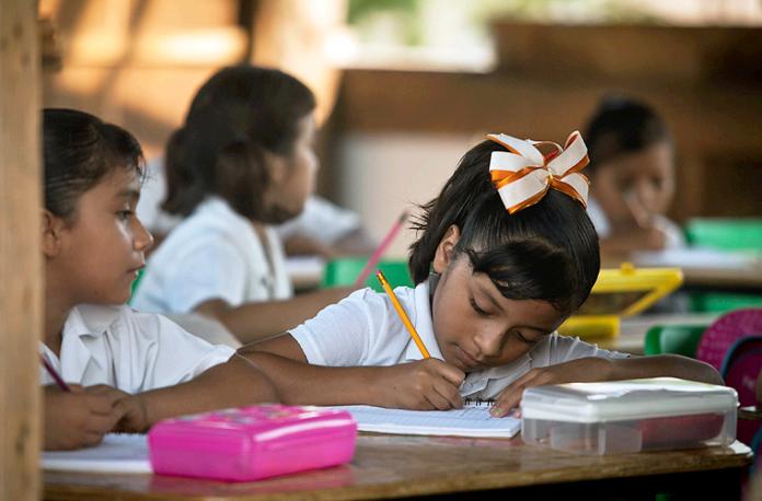Educación, Primaria, Estudio Escuela