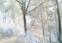 Incendio Cerro del Aguila