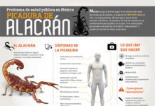 Picadura-de-Alacrán