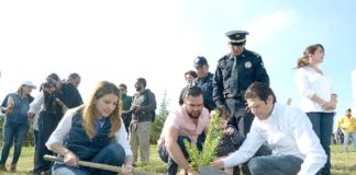 Morelia-Reforestación