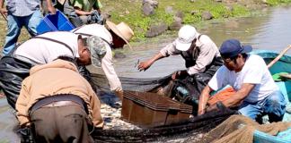 Pescadores-Rurales