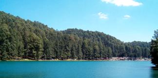 Bosque-Lago-Azufres