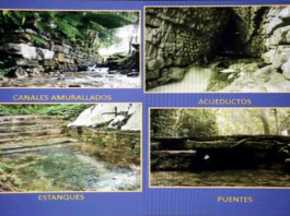 Canales-Palenque